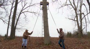 Colocacion de puesto de caza en arbol